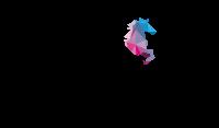 HENGST FILM Logo